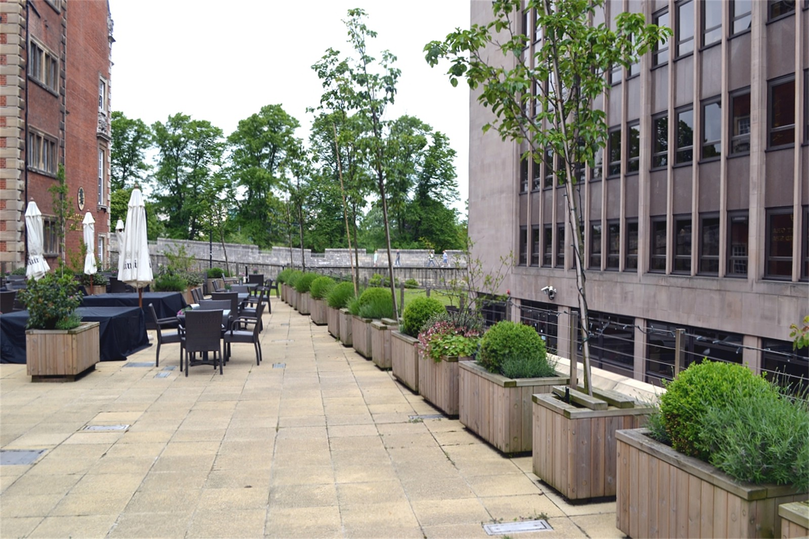c12606 - Diplomat planters supplied to the Cedar Court Hotel