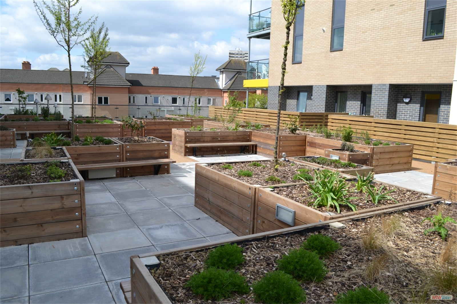 c124h - Gosset Street, Hackney, roof garden planters and seating