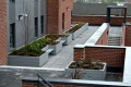 c12411 - Belle Vue Leeds, roof garden planters and seating
