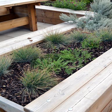 Planter Seating bt Street Design